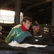 Tierkontrolle zusammen mit dem Landwirt Michael Mölder